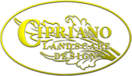 2016 Best Custom Swimming Pools-Cipriano Landscape Design NJ