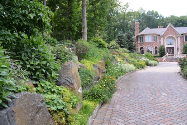 front entry landscaping NJ company 600x400 Pool & Landscaping Testimonials