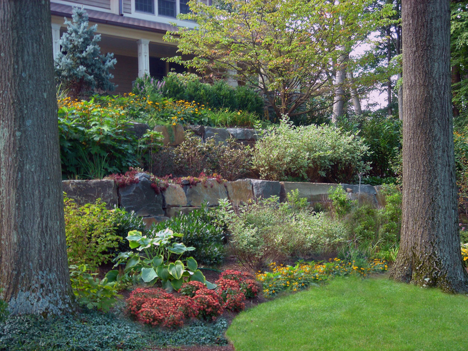 NJ Planting Design Ideas for Formal Natural Landscapes