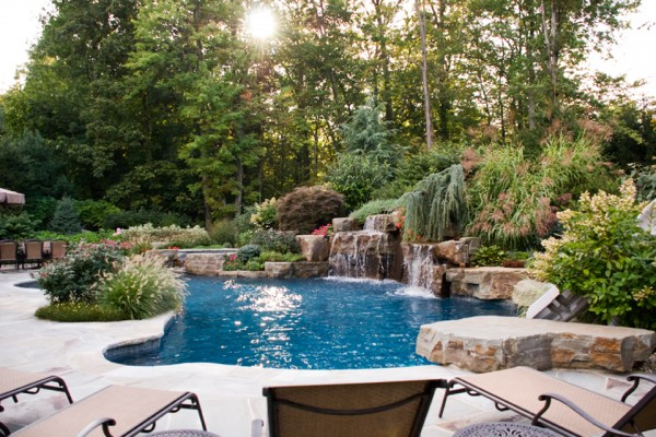 natural pool plants trees nj 600x400 Trees & Plants