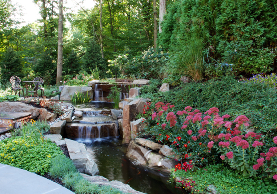 Professional pool landscaping garden maintenance bergen for Pool design nj