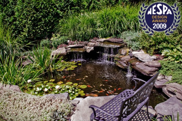 natural pond fish pond 600x400 Award Winning Pools & Landscaping
