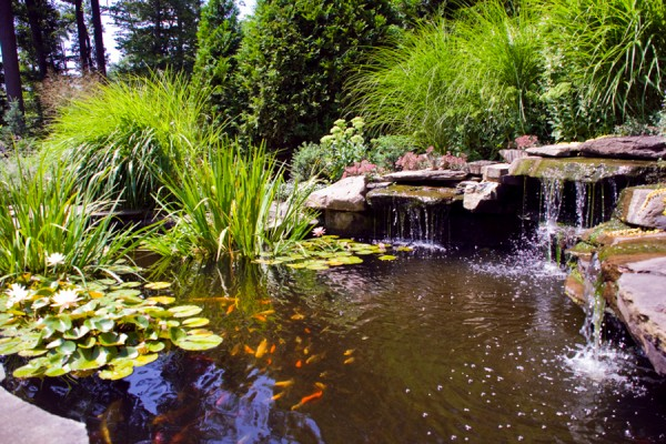 water features nj 6 600x400 Waterfall & Fountains