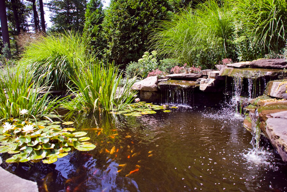 Inground Pools With Waterfalls saddle-river-nj-natural-infinity-edge-inground-pool-landscape