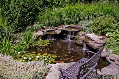 11394828544landscape design bergen county nj 2 HOW TO LANDSCAPE A POND WITH AQUATIC PLANTS   CIPRIANO NJ
