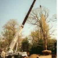 1366053228cape construction nj 2 200x200 ALPINE NJ   COOL LANDSCAPE & POOL RENOVATIONS & CONSTRUCTION
