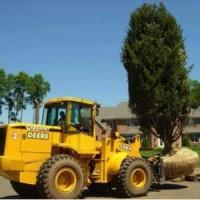 1366053249ee planting landscape construction 2 200x200 ALPINE NJ   COOL LANDSCAPE & POOL RENOVATIONS & CONSTRUCTION